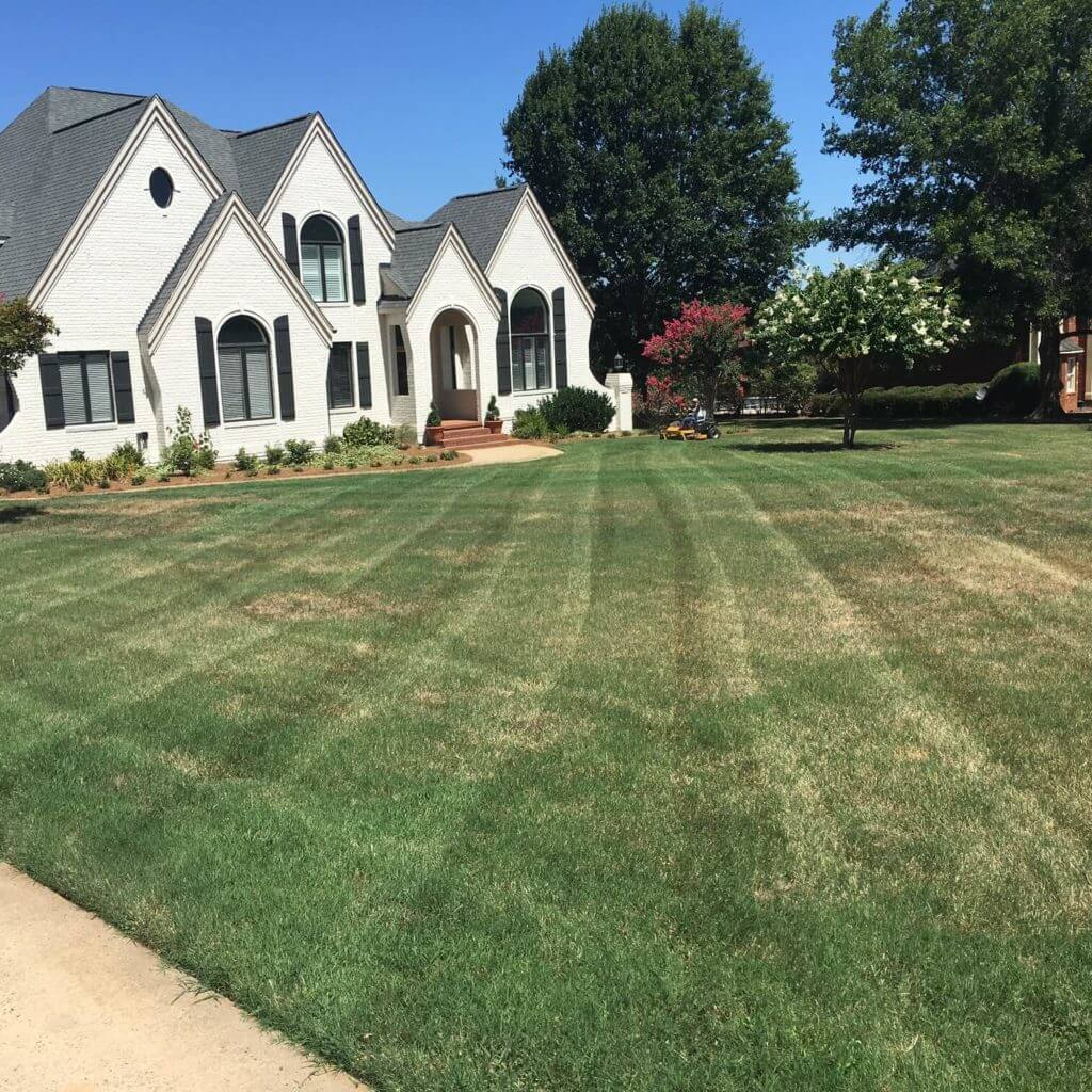 Want to know? how Turf Warrior grows and how Ryan grows as an entrepreneur